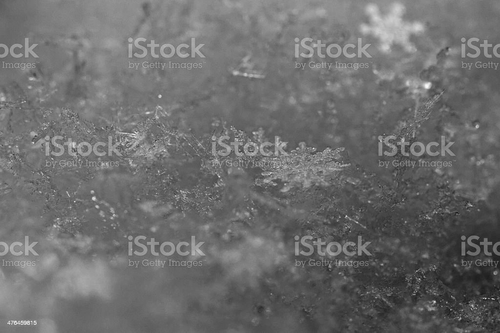 beauty white snowflake crystals royalty-free stock photo