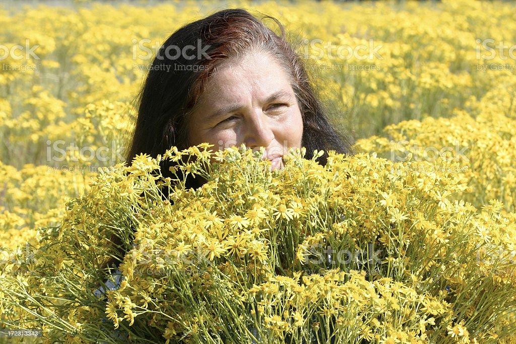 Beauty woman stock photo