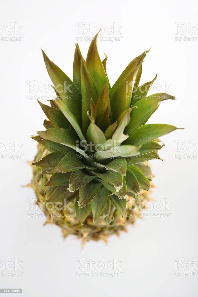 beautyful fresh pineapple stock photo