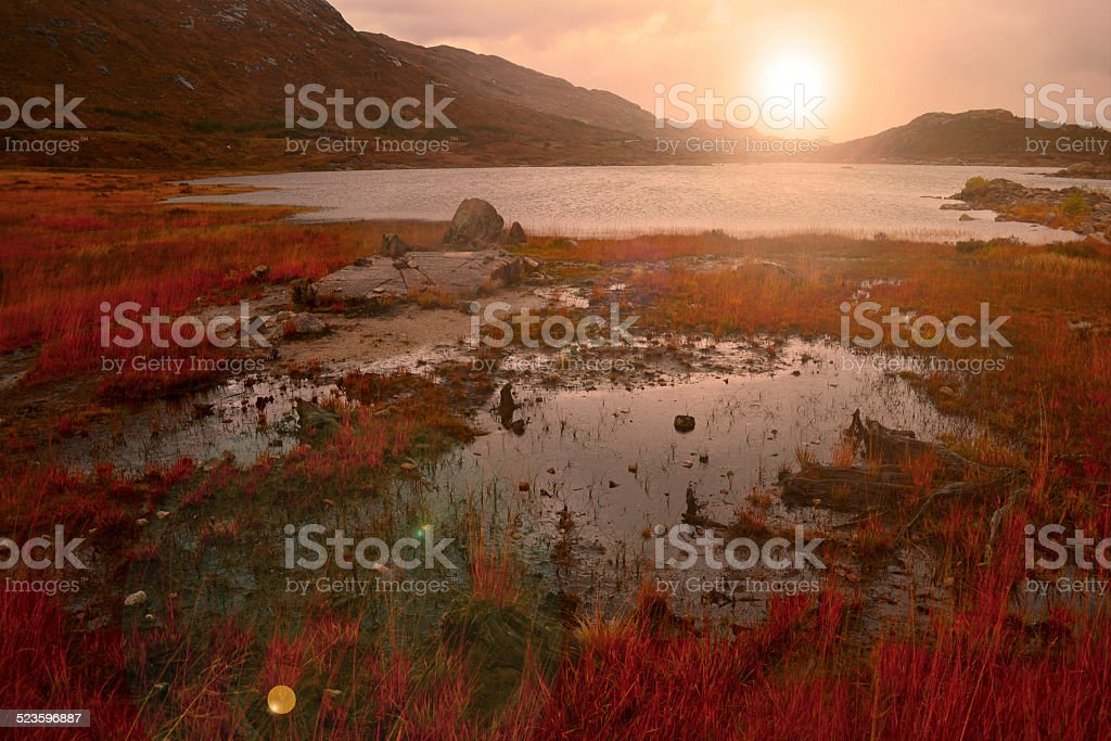 Beautyful scenery at east of the Scotland royalty-free stock photo