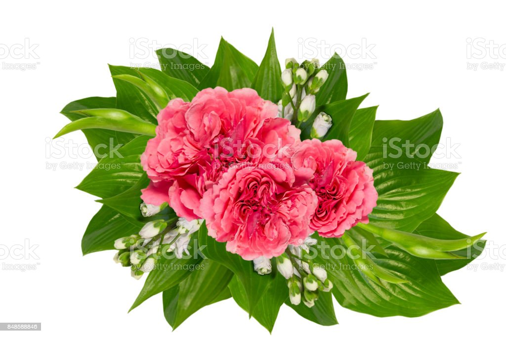 Beautyfull buqet of rozes  on a white background with space for text. stock photo