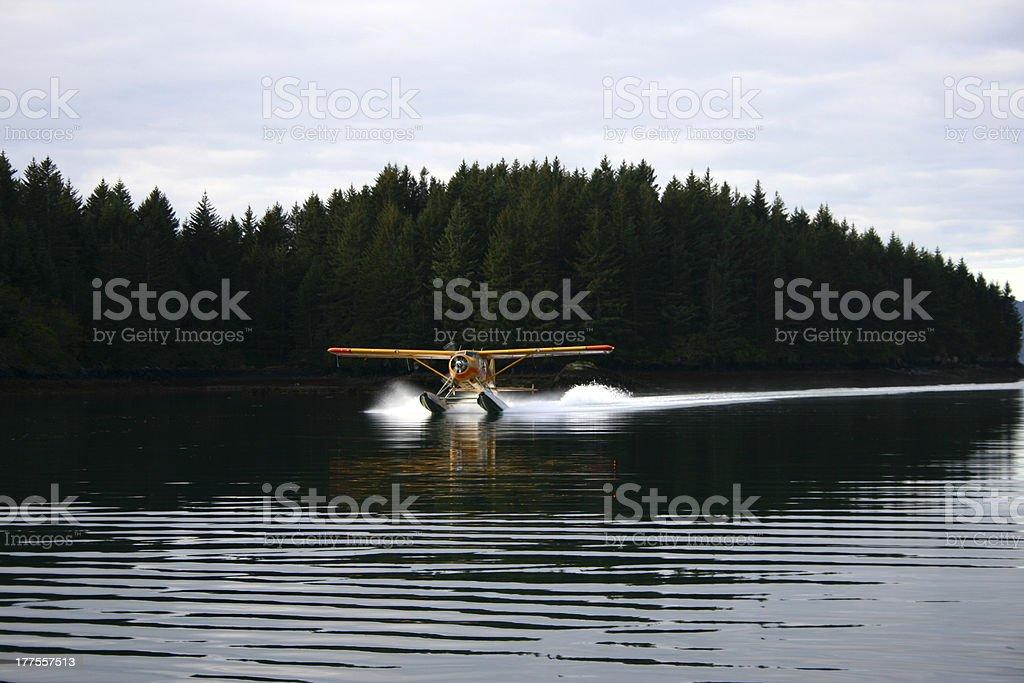 beaver airplane stock photo