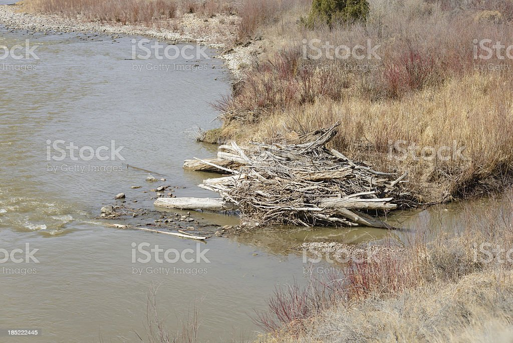 Beaver Dam and River royalty-free stock photo