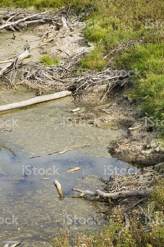 Beaver Dam Home royalty-free stock photo
