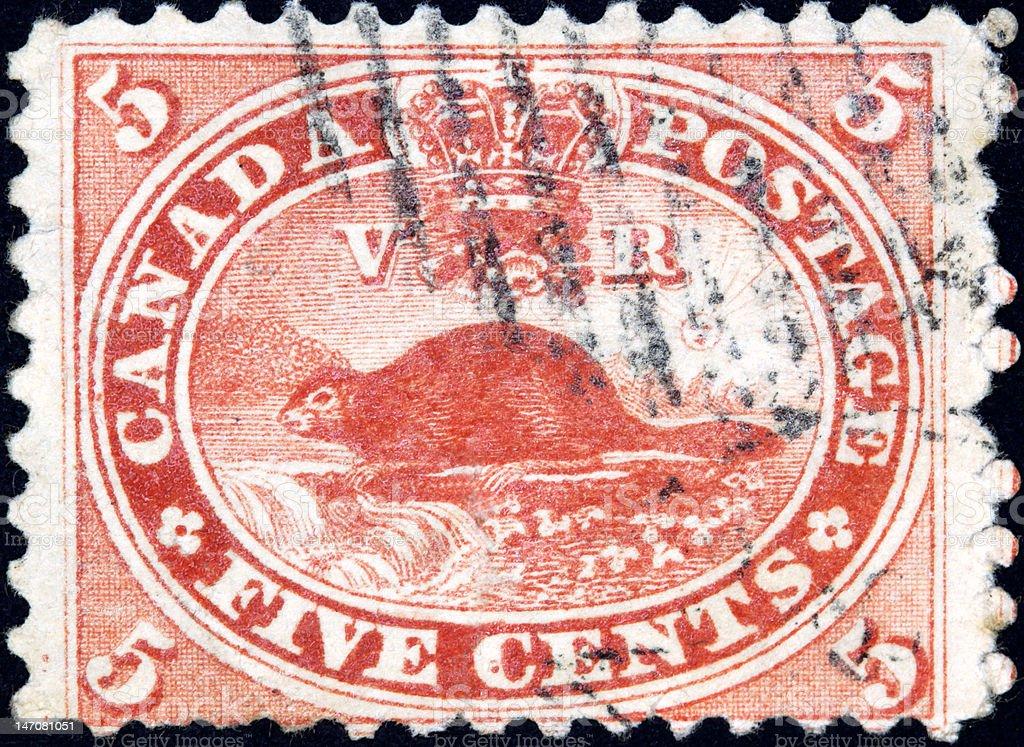 Beaver Stamp royalty-free stock photo
