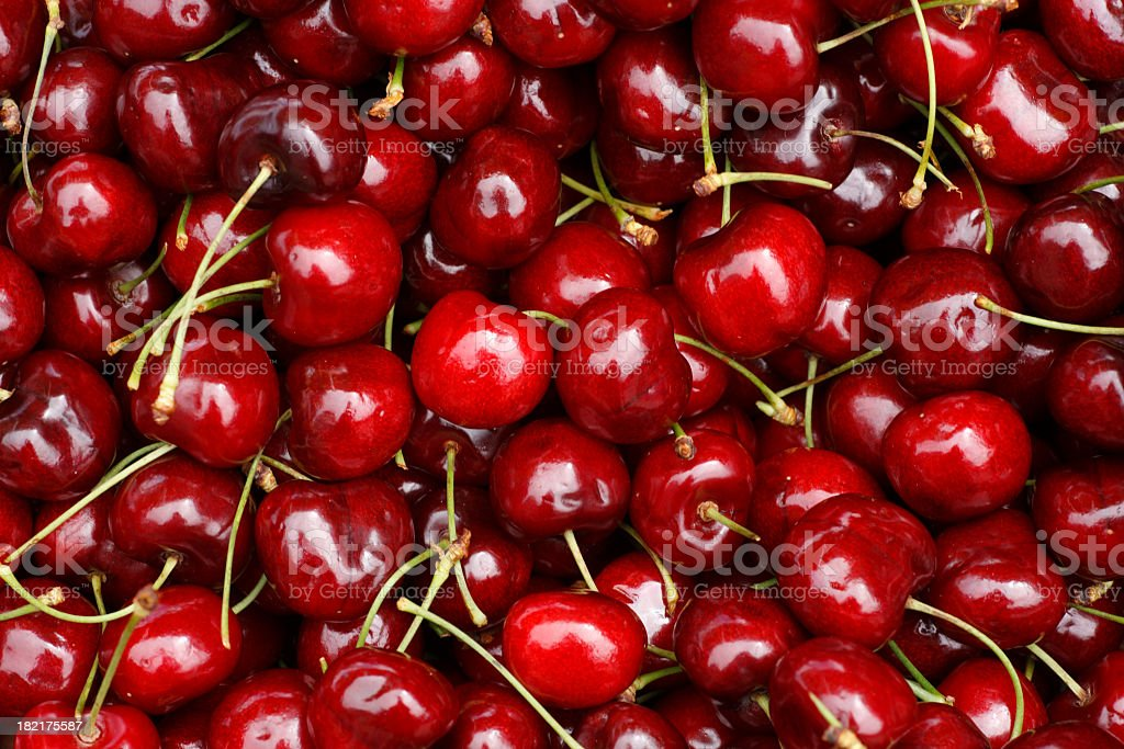 Bed of farm fresh cherries stock photo