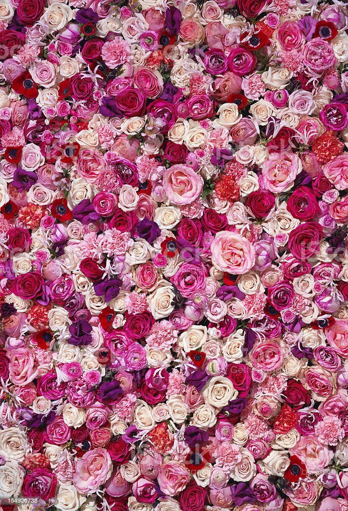 Bed of Flowers stock photo