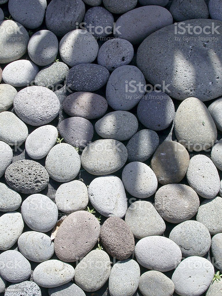 Bed of smooth rocks with a plant shadow. royalty-free stock photo