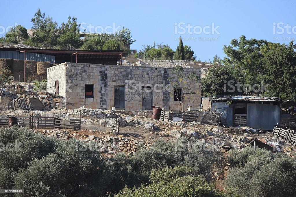 Bedouin farm in Galillee Israel stock photo