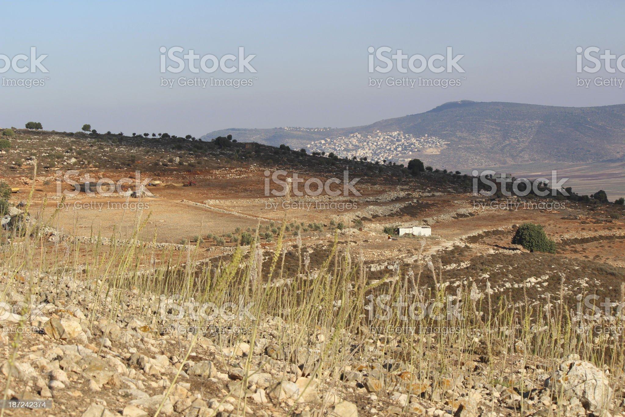 Bedouin farmland in Galillee Israel royalty-free stock photo