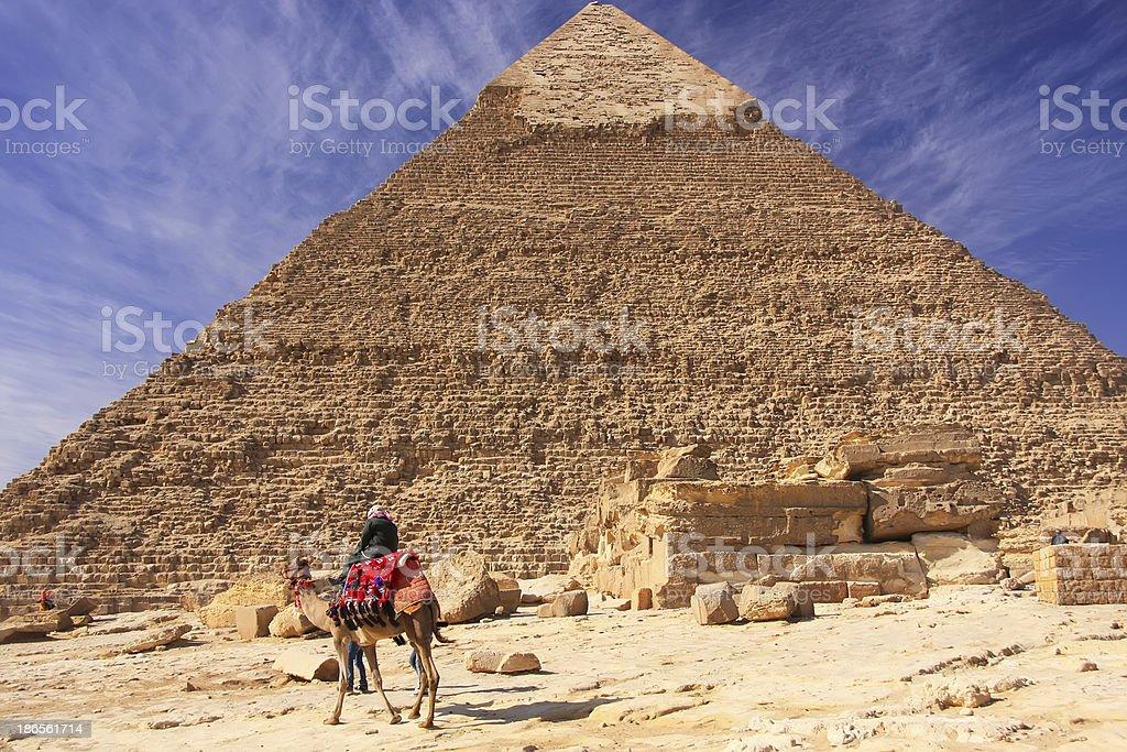 Bedouin on a camel near Pyramid of Khafre, Cairo stock photo