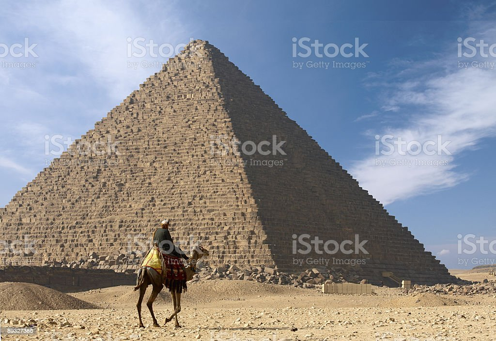 Bedouin on camel near of great egypt pyramid royalty-free stock photo