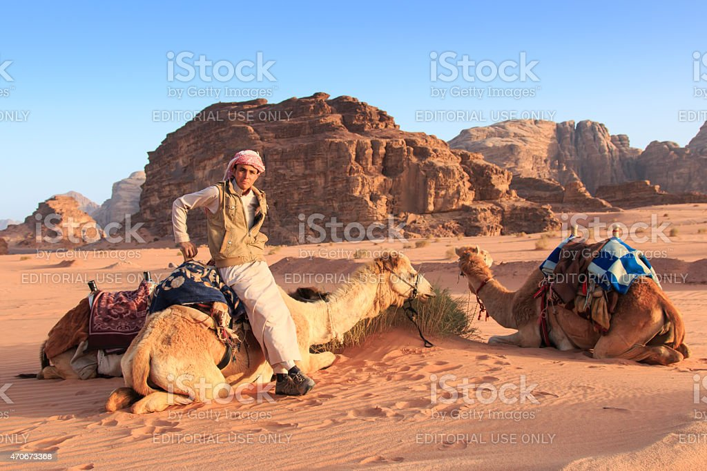 Bedouins preparing the camels for the tourist, Wadi Rum Jordan stock photo