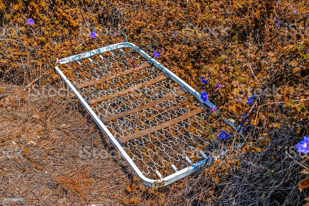 bedspring left in the midst of the weeds stock photo