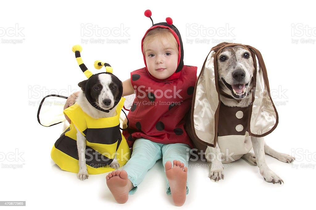 Bee, Bug and Bunny stock photo