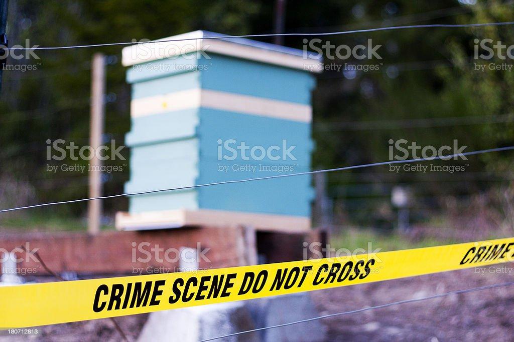 Bee Hive Crime Scene royalty-free stock photo