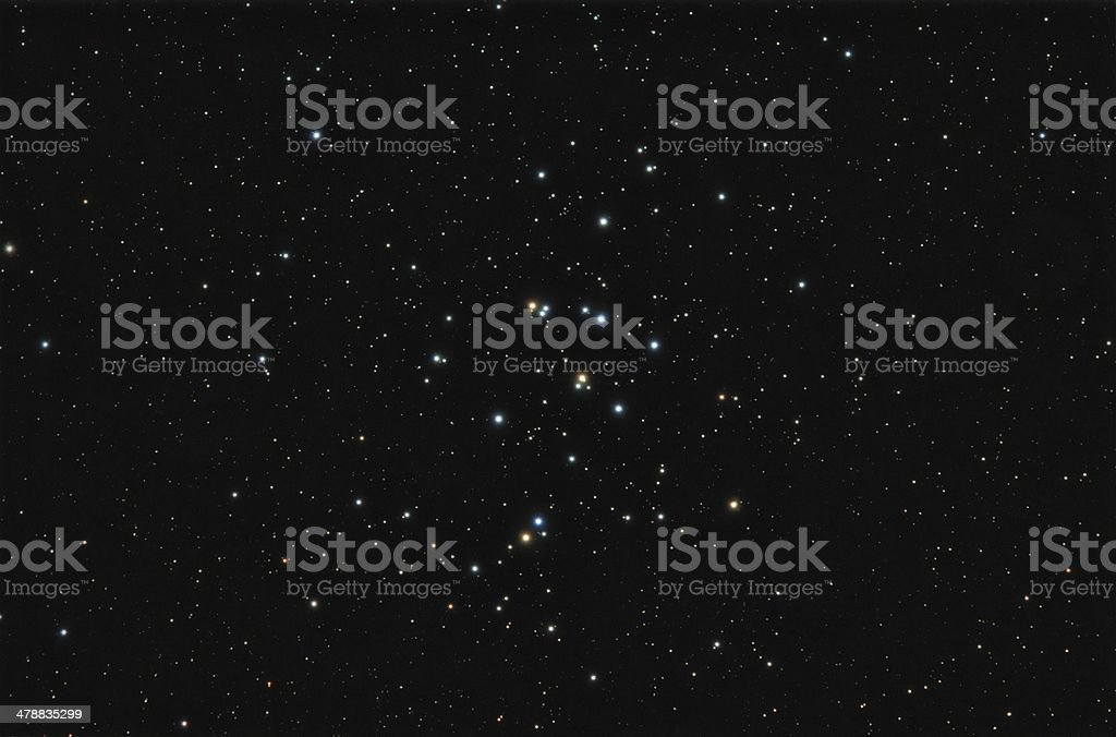 Bee Hive Star Cluster royalty-free stock photo