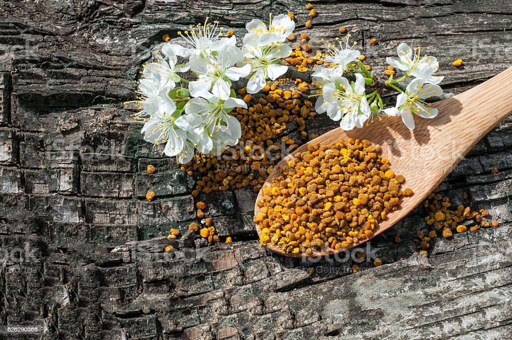 Bee pollen in a wooden spoon and flowers of spring stock photo