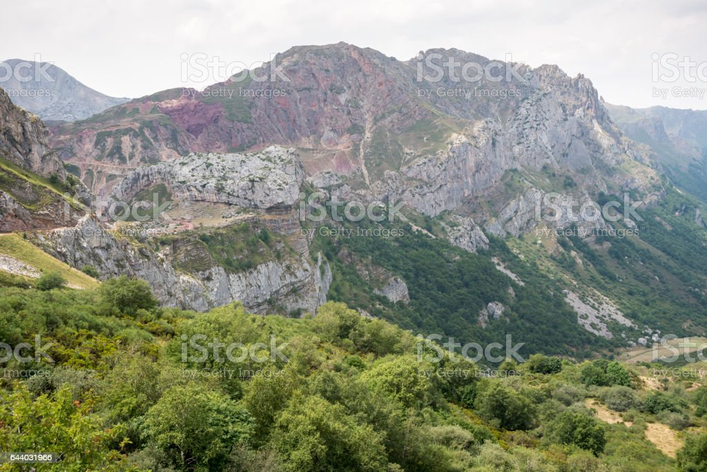 Beech forest on limestone mountains in Saliencia Valley stock photo
