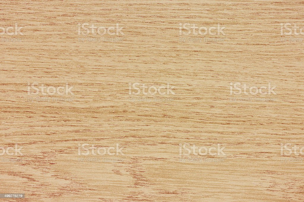 beech wood texture stock photo