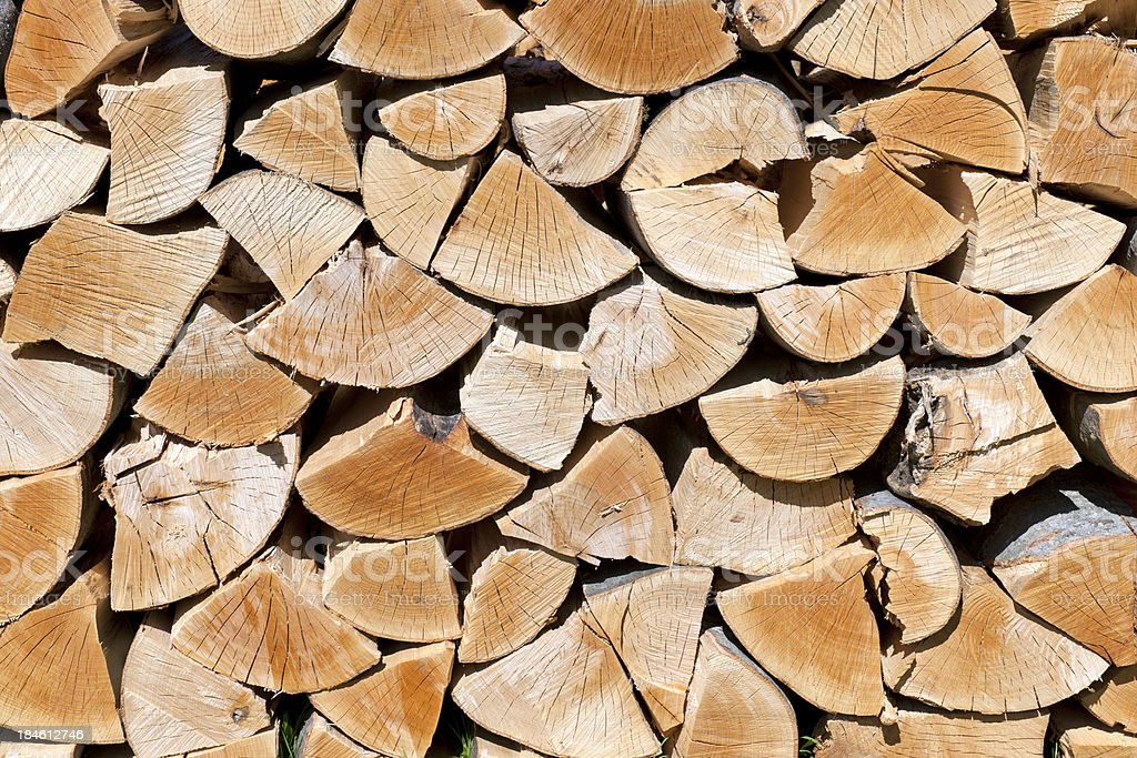 Beech Woodpile royalty-free stock photo