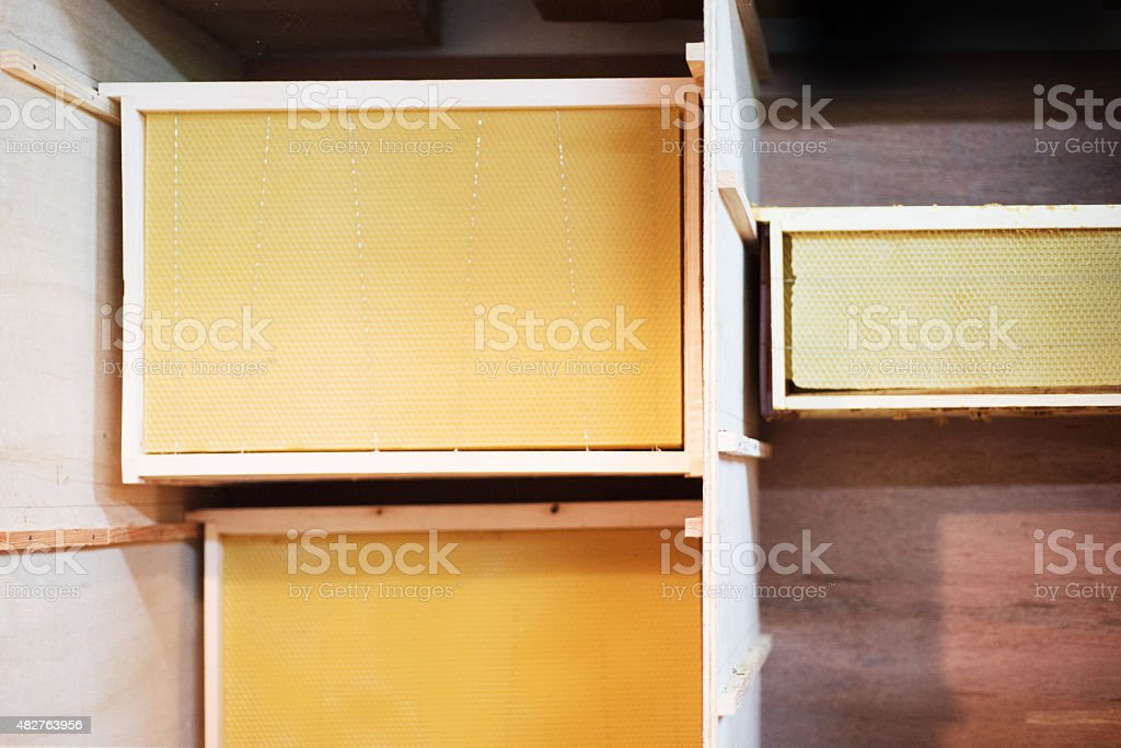 Beehive waxed frames stored hanging stock photo