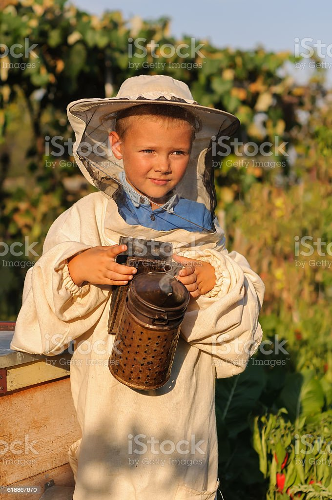 beekeeper  a young boy  in the apiary stock photo