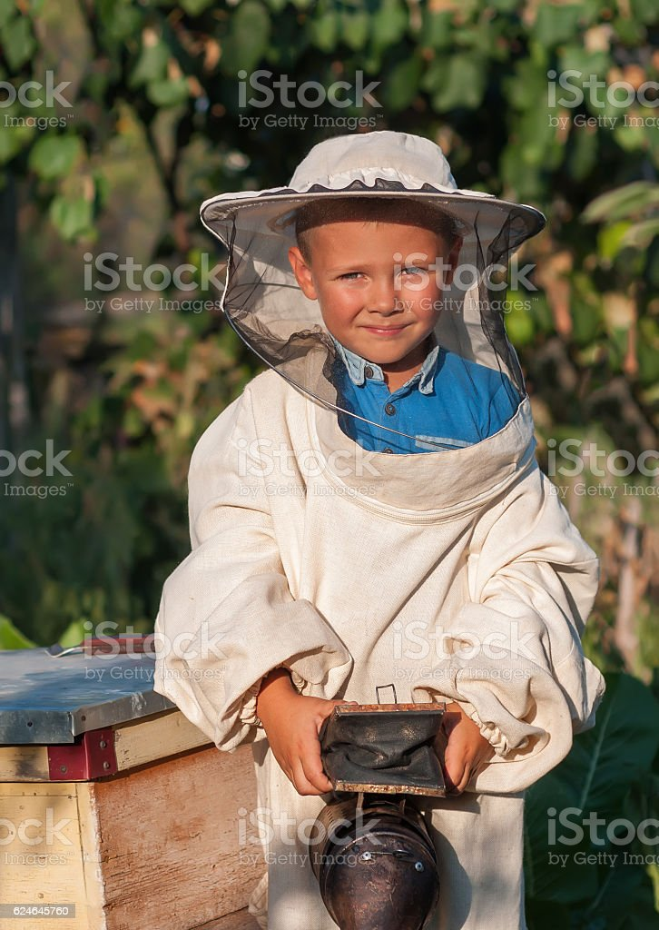 beekeeper a young boy who works in the apiary stock photo