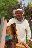 Beekeeper on apiary. pulling frame from the hive