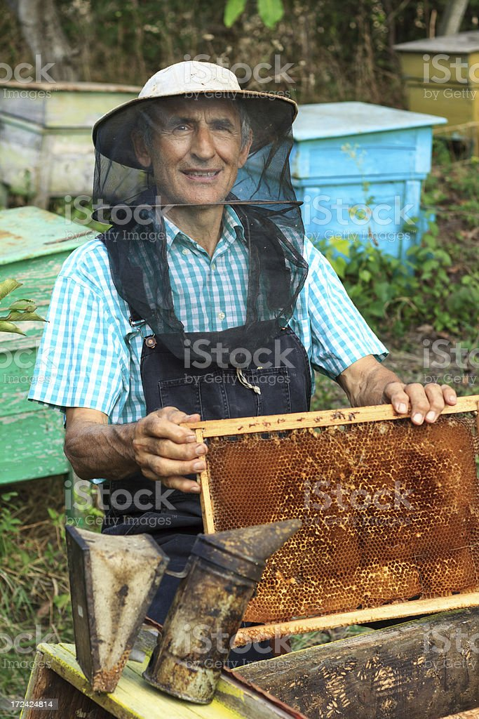 Beekeeper royalty-free stock photo