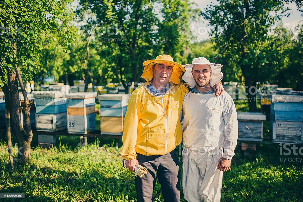 Beekeepers and hives stock photo