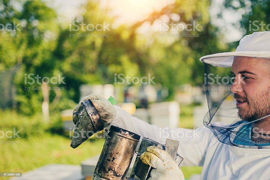Beekeepers use of smoke stock photo