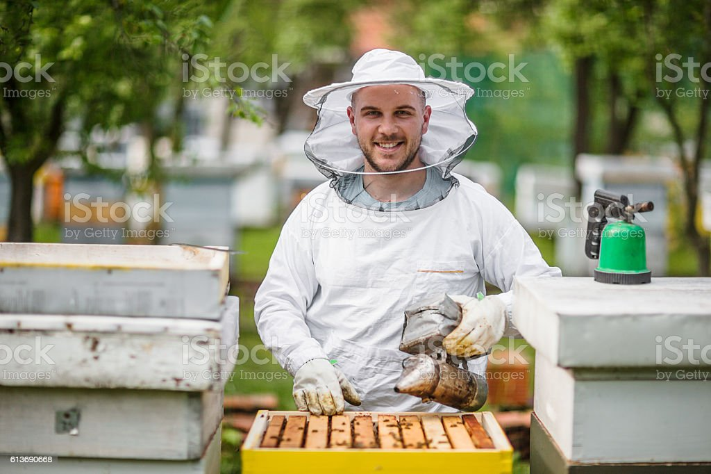 Beekeeping as a way of life stock photo