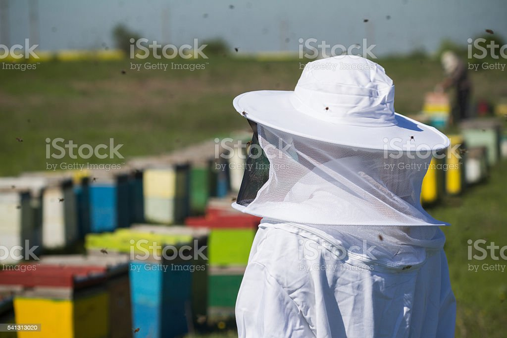 beekeper in protection suit stock photo