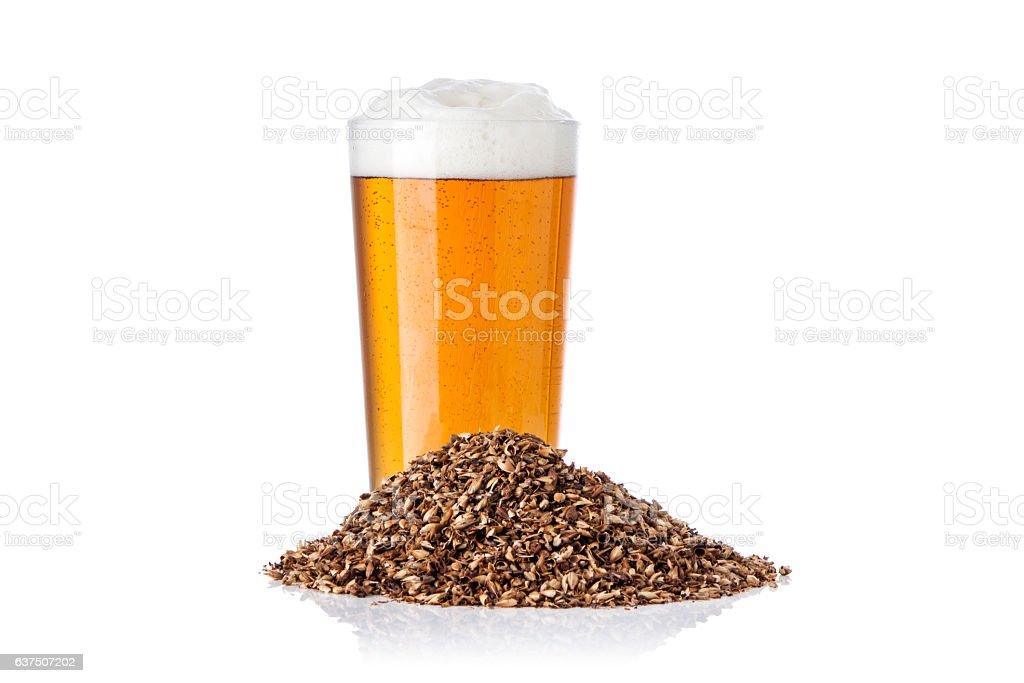 Beer and Barley stock photo
