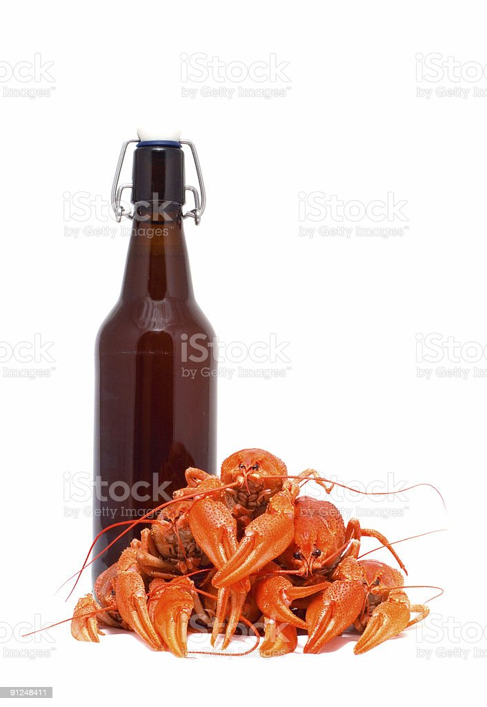 Beer and crawfish. royalty-free stock photo