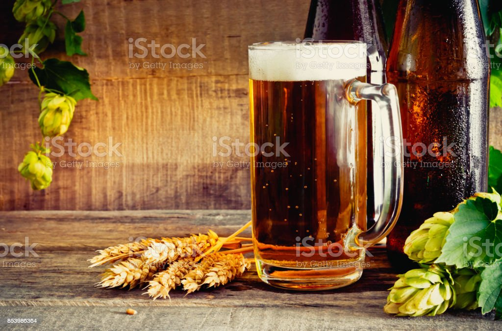 Beer and hops stock photo