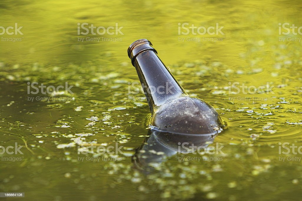 Beer Bottle Floating Swamp Pollution royalty-free stock photo