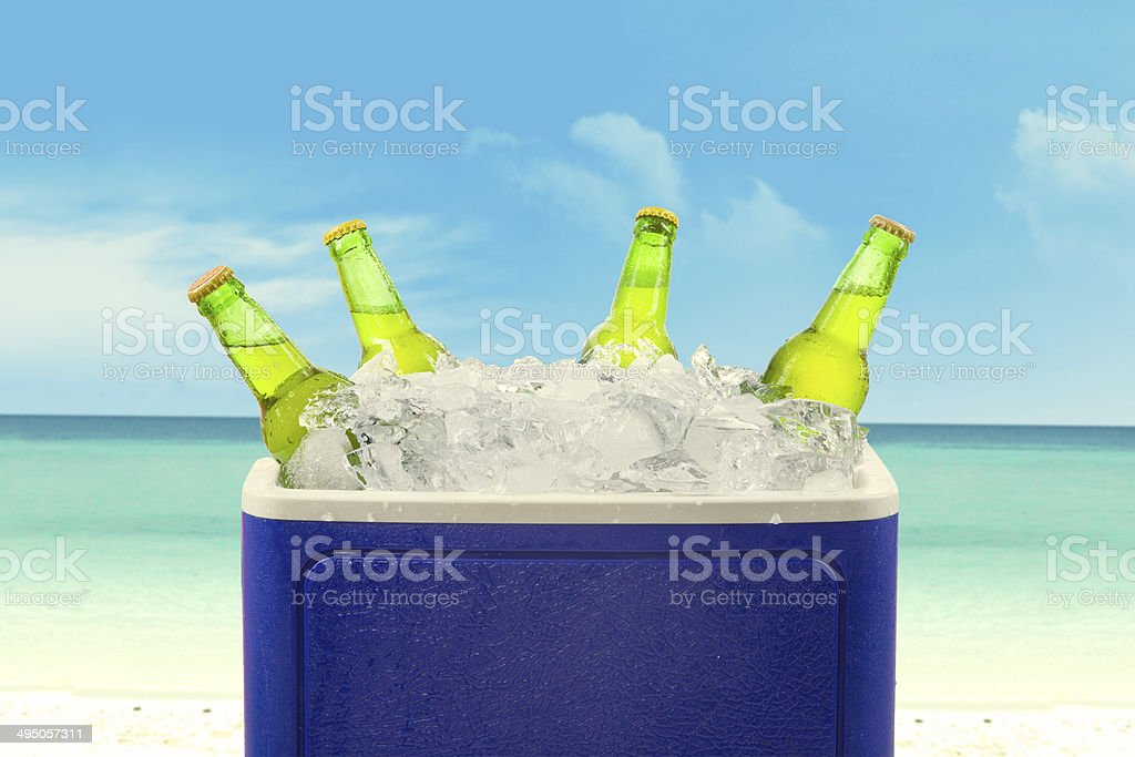 Beer bottles in ice box stock photo