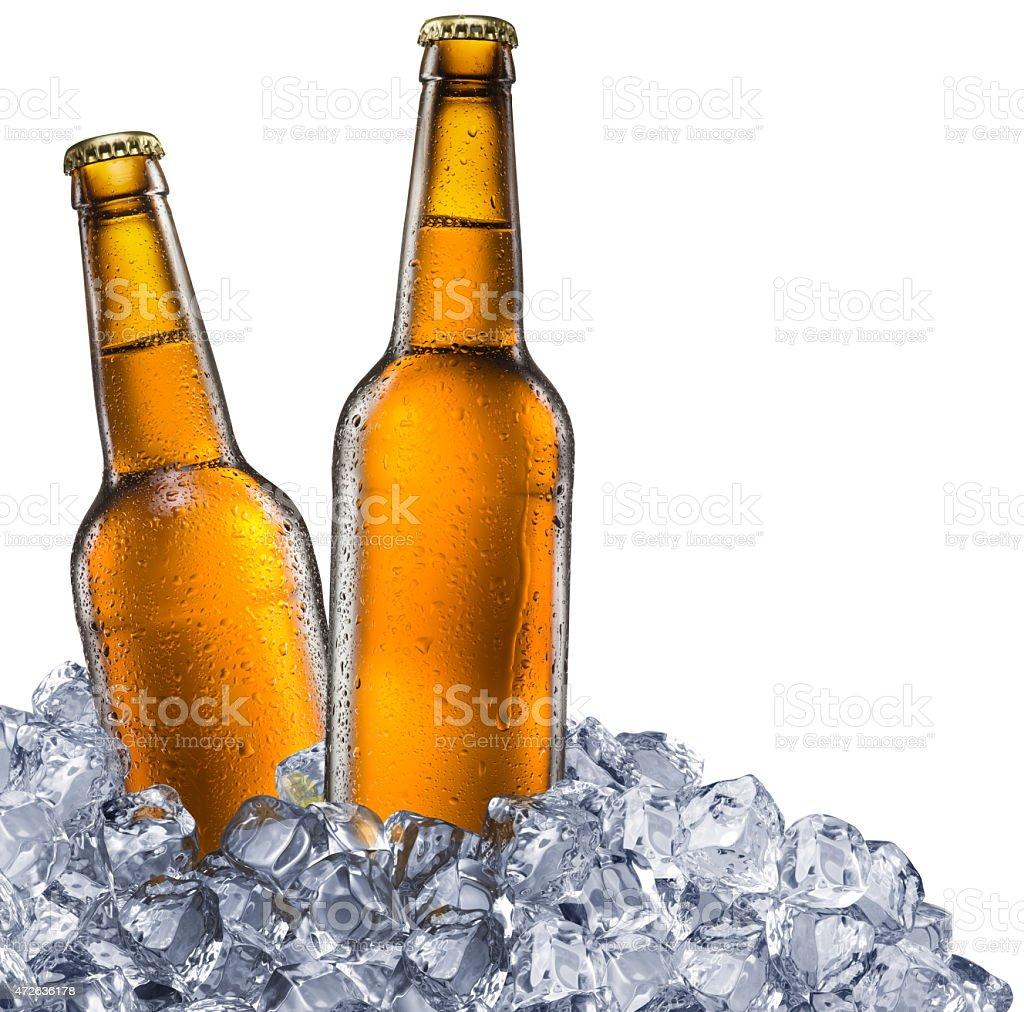 Beer bottles on white background. stock photo