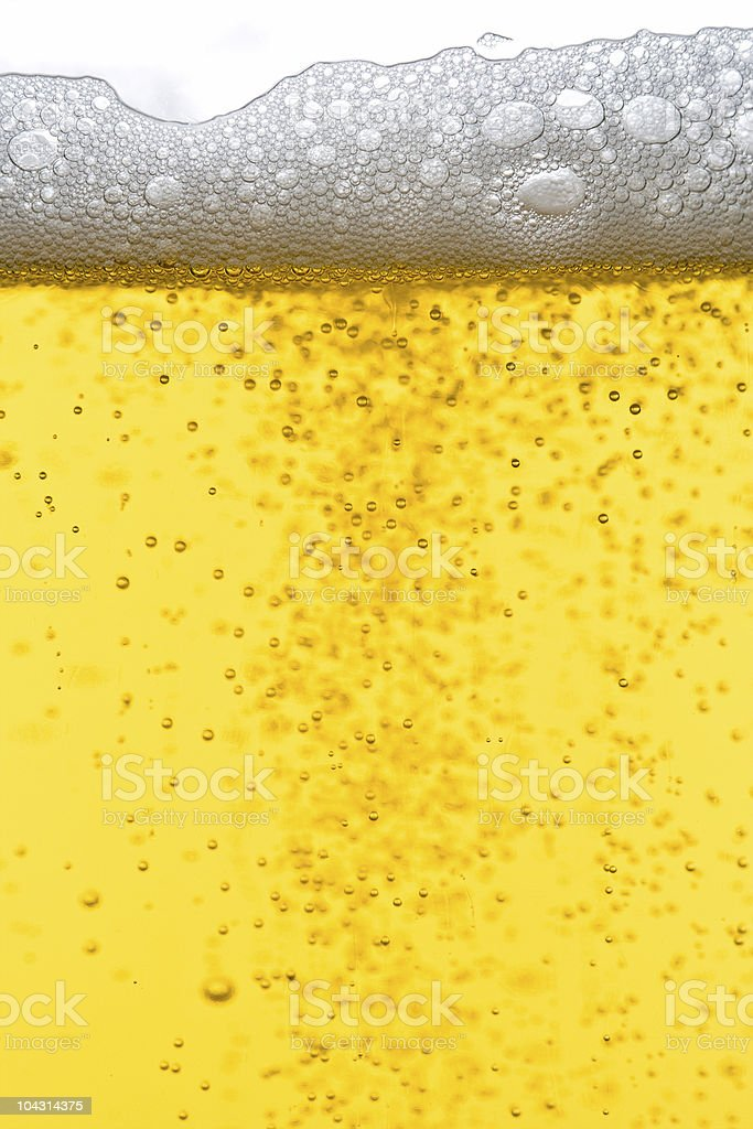Beer bubbles stock photo
