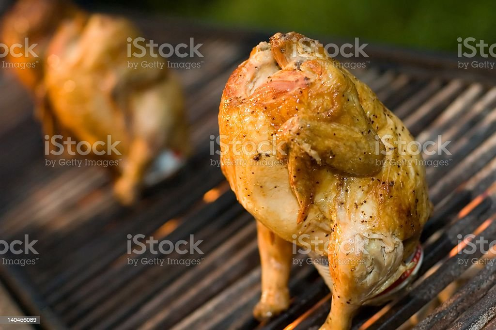 Beer can chickens roasting on grill royalty-free stock photo