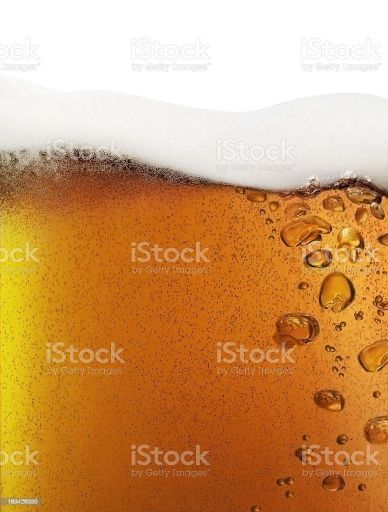 Beer closeup isolated on white stock photo