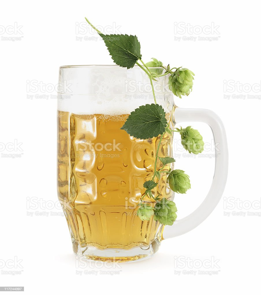 Beer Glass With Branch Of Hop royalty-free stock photo