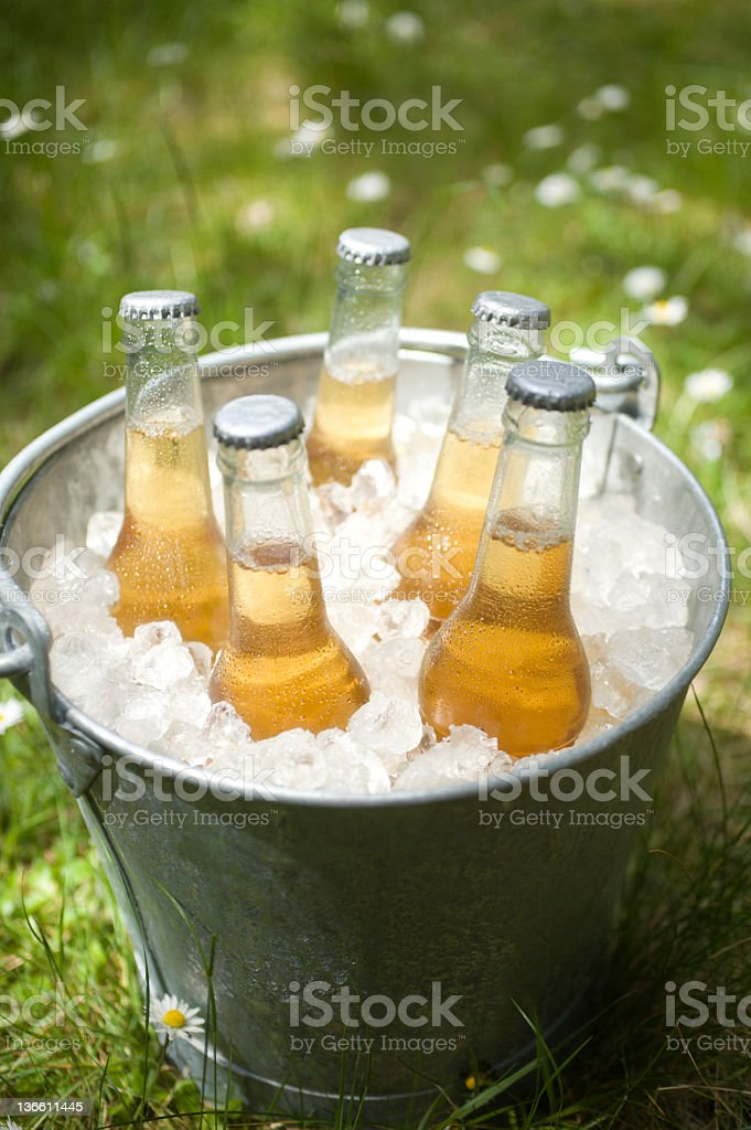 Beer in a Bucket royalty-free stock photo