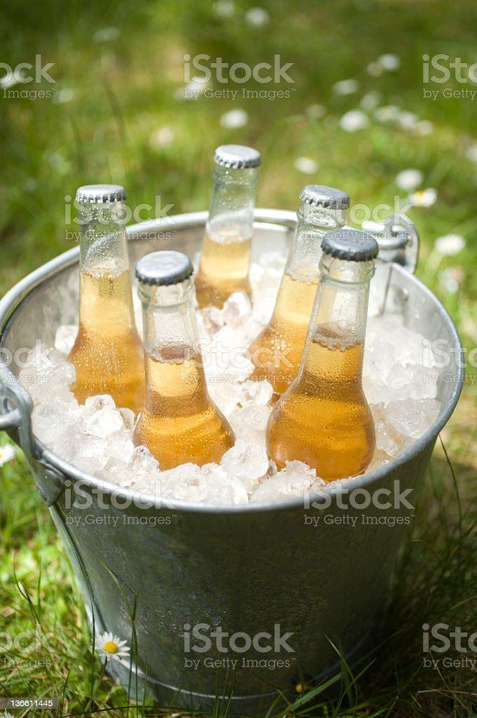 Beer in a Bucket stock photo