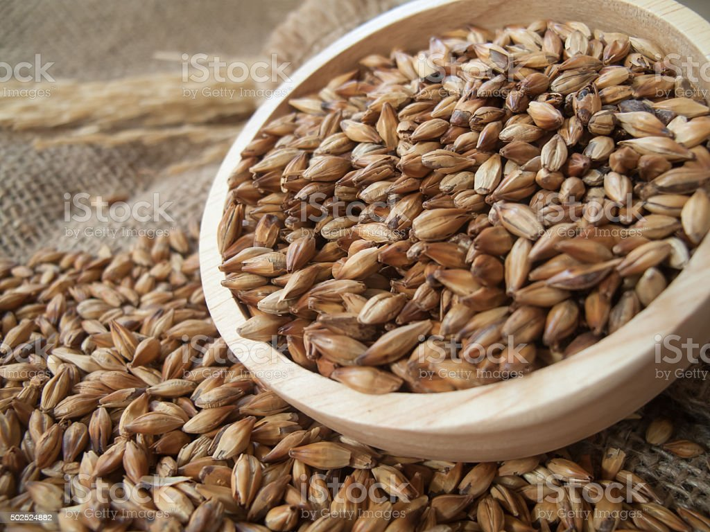 Beer ingredients, Caramel malt in wooden bowl and on sackcloth stock photo