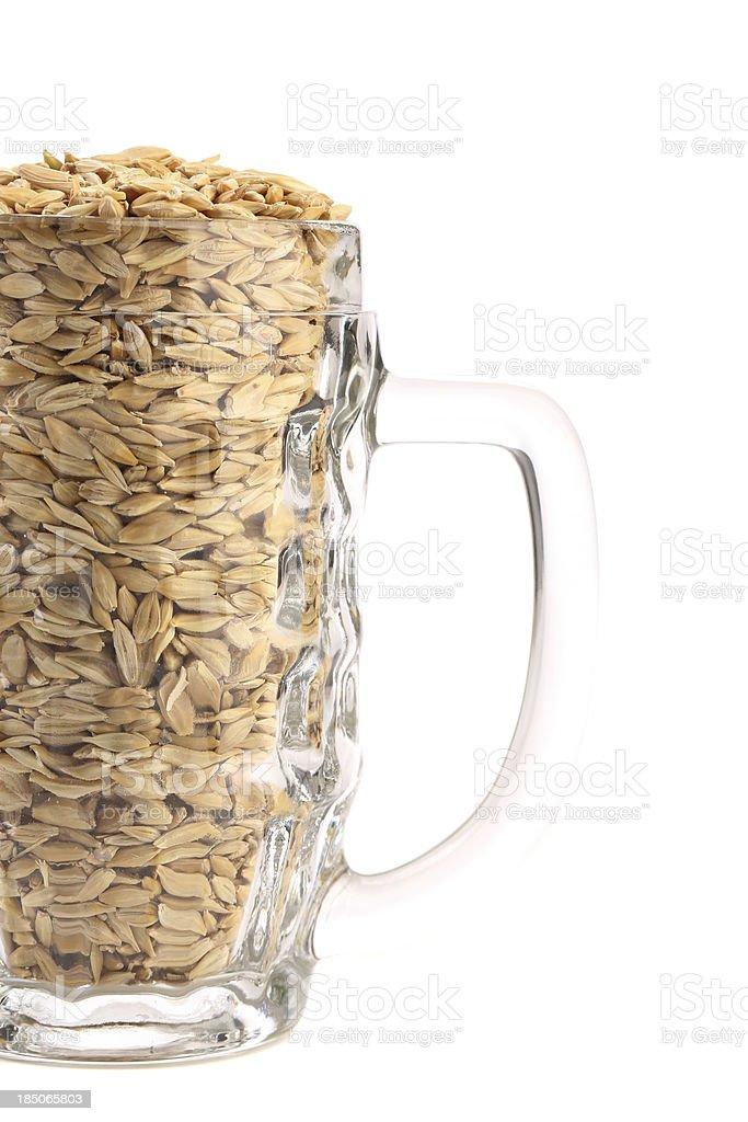 Beer mug with barley. royalty-free stock photo