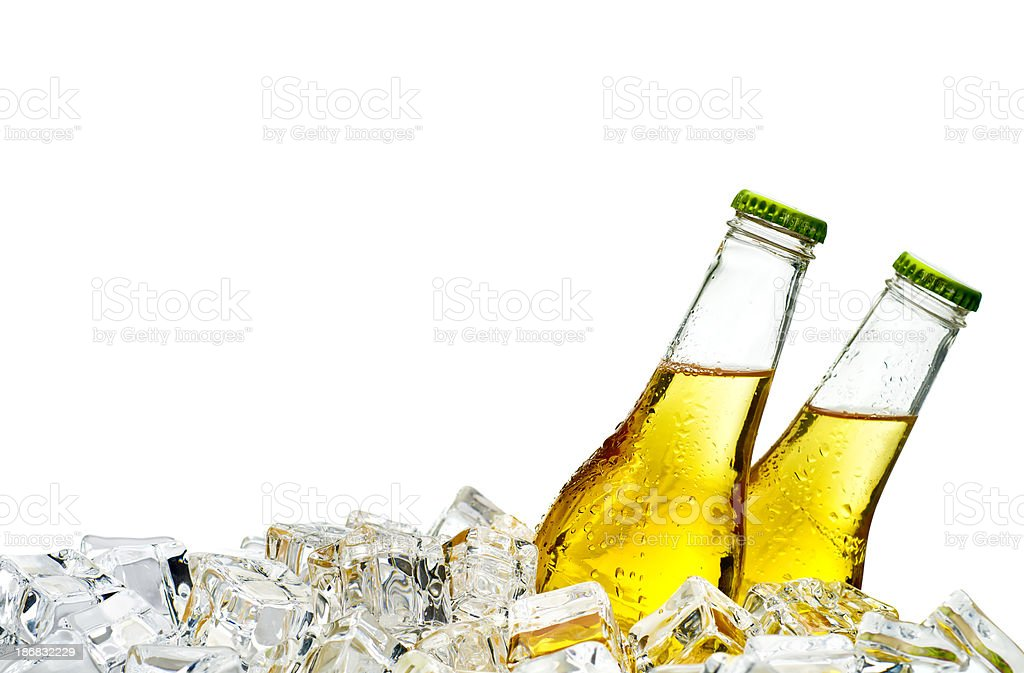 Beer on ice stock photo