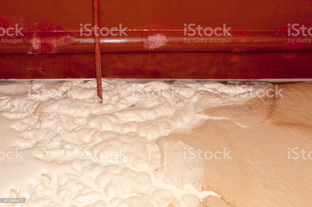 beer production stock photo